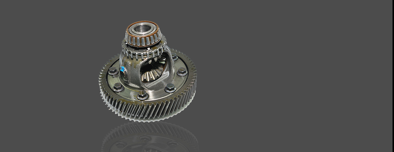 Differential Gear Service in Parker CO