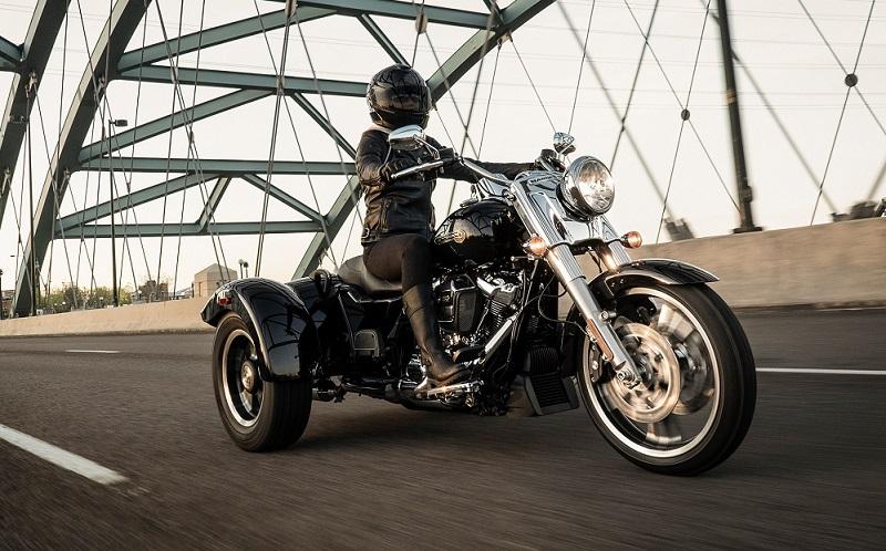 Pennsylvania - 2019 Harley Davidson Freewheeler