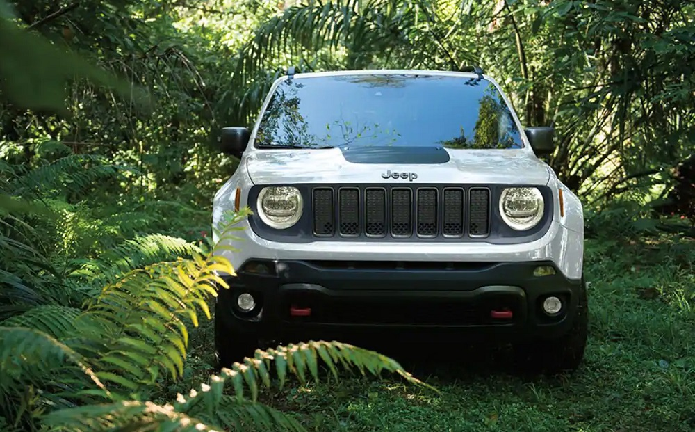 Dewitt Area 2019 Jeep Renegade