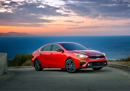 Littleton Area - 2019 Kia Forte's OVERVIEW