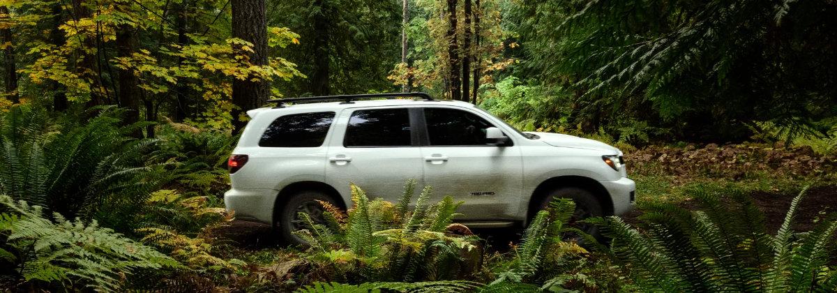 2022 Toyota Sequoia near Pittsburgh PA